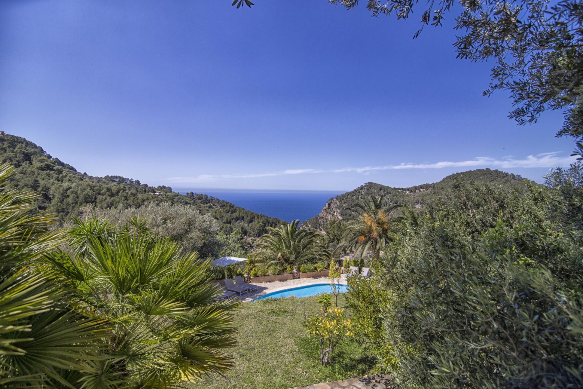 Ausblick mit blauem Himmel und Palmen auf Mallorca